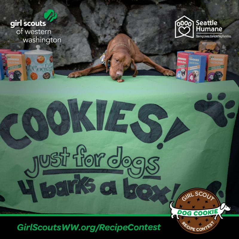 #GSDogCookie Contest